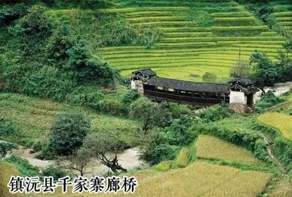 茶学入门|普洱茶四大产区之普洱市