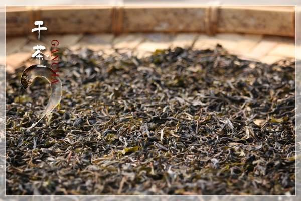从茶山到茶杯:图文讲解普洱茶制作工艺