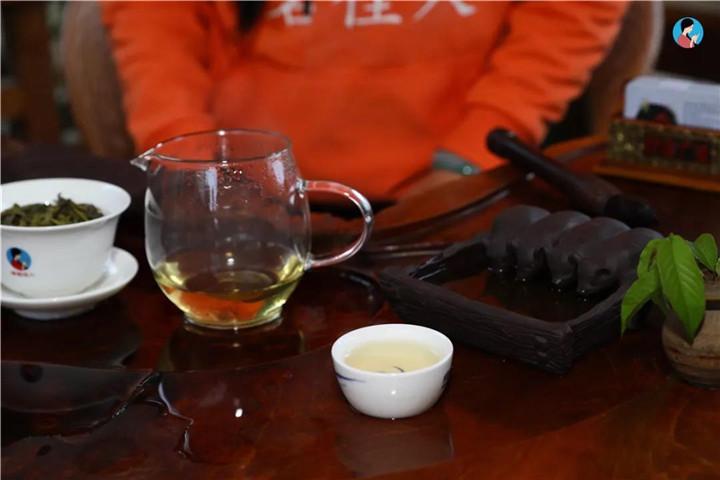 """普洱茶里的""""十二金钗""""?"""