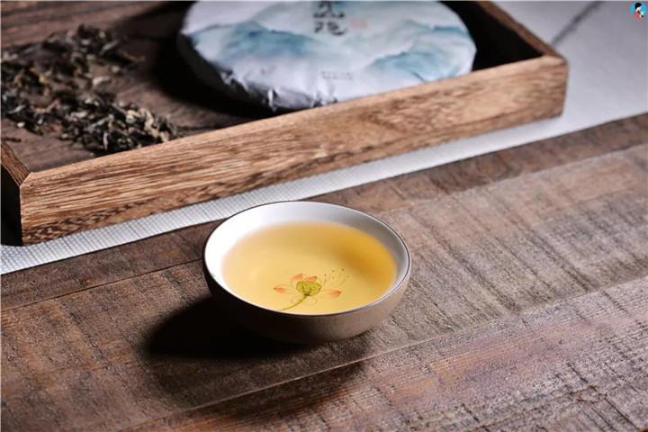 """普洱茶行业为什么说""""茶山无老茶,茶农不存茶""""?"""
