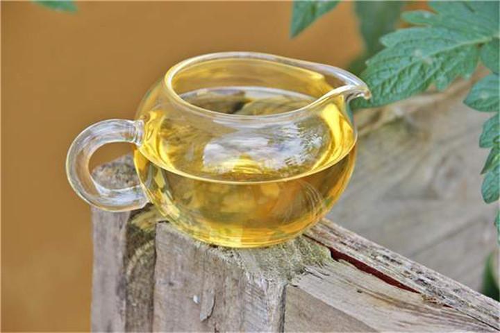 普洱茶的辨识,由茶菁和毛茶开始