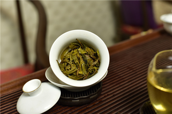 如何分辨古树茶,这一点很重要!