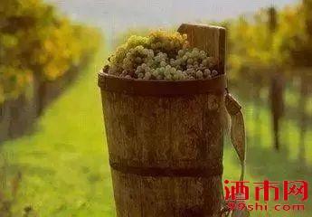 为什么有机、生物动力与可持续发展葡萄酒更贵?